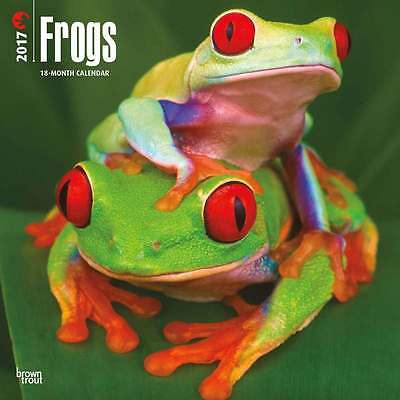 Frogs Calendar 2017 Animal Wall Calendar Month View Wildlife New