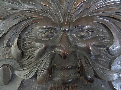 19th Century Carved Oak Panel of a Green Man Devil