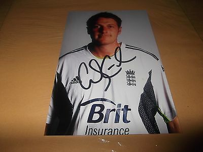 England cricket Andrew Gale  6x4 signed portrait photo