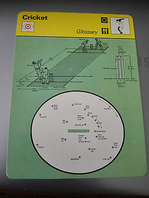 CRICKET - GLOSSARY AND EXPLANATION OF POSITIONS - Sportscaster Photo Card