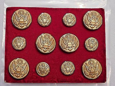 1921-1925 Army Button Set For Standing Collar Service Coat - Mint  (B9)