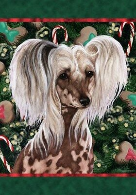 Large Indoor/Outdoor Holiday Flag - Chinese Crested 14069