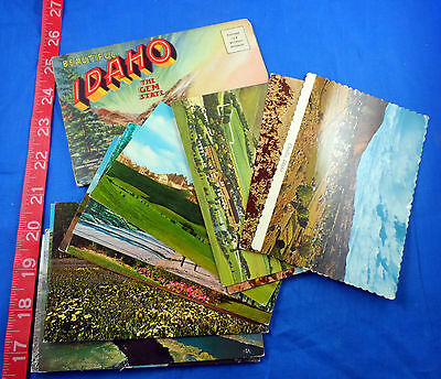 Idaho State Vintage Postcard Lot Of 14, Some Old, Includes Fold-Out Card