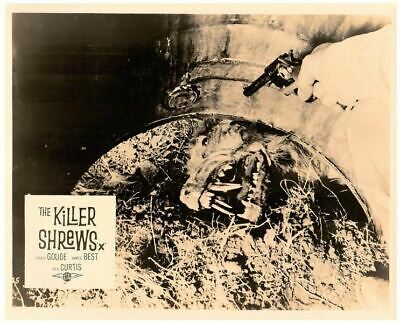The Killer Shrews Original Lobby Card B-Movie Horror Cult Classic 1959