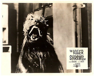 The Killer Shrews Original Lobby Card B-Movie Horror Cult Classic 1959 Monster