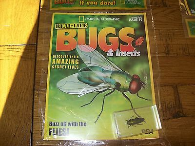 National Geographic Real-life Bugs & Insects magazine Issue 19
