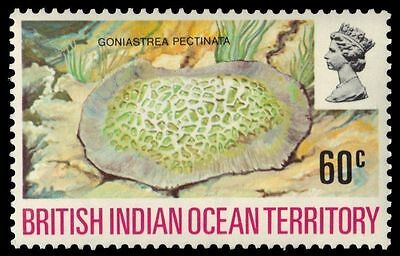 """BR INDIAN OCEAN 45 (SG42)- """"Goniastrea"""" Coral (pa55113)"""