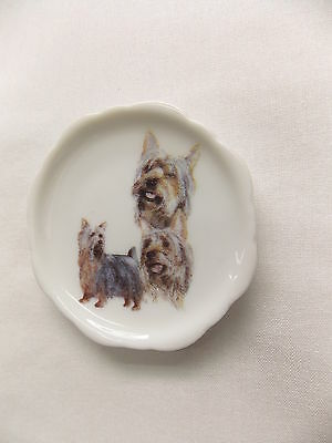 Silky Terrier Dog 3 View Porcelain Plate Magnet Fired Decal- 86