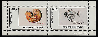 GB Locals - Bernera (1105) 1981 FOSSILS perf sheetlet unmounted mint