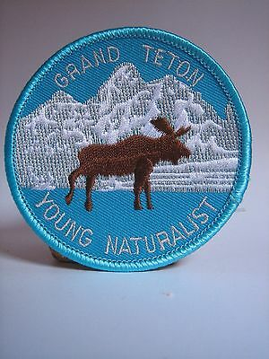 Jackson Hole WYOMING State Souvenir Embroidered Patch