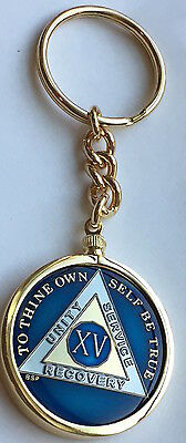 AA Medallion Holder Keychain For BSP Tri-Plate Medallions Triplate Chip Coin