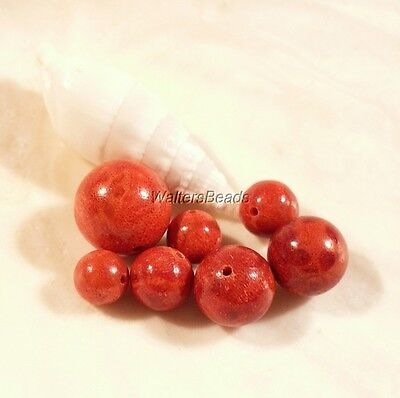 Apple Coral Focal Bead Set Corrugated Set 3 Sizes 6, 8, 10  12 MM  (7 Beads)