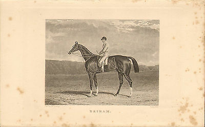 """1840s illustration of a race horse called """"  beiram """"  by j.f.herring"""