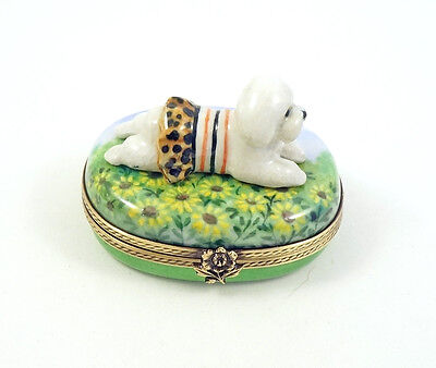 New French Limoges Trinket Box Dressed Up Bichon Frise Dog Puppy On Sunflowers