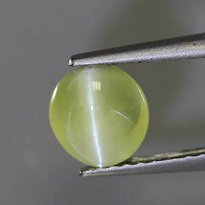 "0.99cts""Sri Lanka"" Yellowish Green"" Natural Chrysoberyl Cat"" Eye"" Oval "" PR1296"