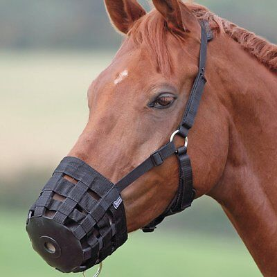 English Or Western Grazing Or Safety Muzzle Pony Or Miniature Size Horse Black