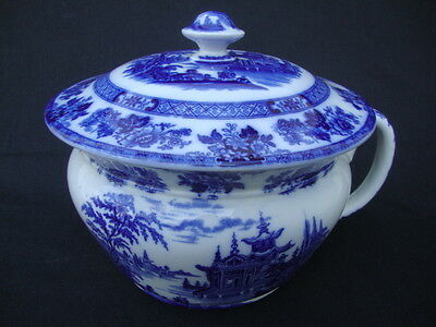 Vintage Royal Doulton Chamber pot w Lid Blue Willow Potty Side handle & White