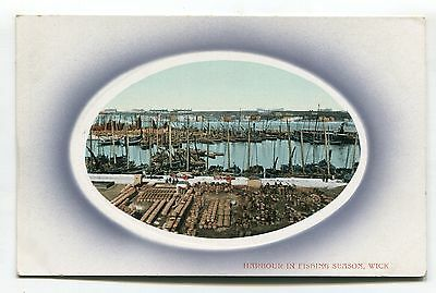Wick, Caithness - harbour in fishing season - old postcard