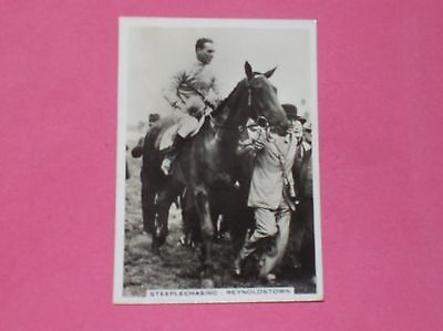 Horse Racing Reynoldstown Jumps Sporting Events and Stars Pattreiouex card