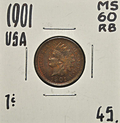 1901 United States One Cent MS-60 rb