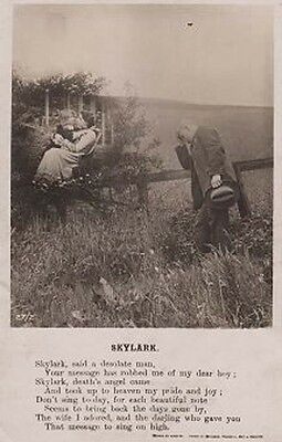 Skylark Wife Wifes Gone To Heaven Funeral Remembrance Antique Songcard Postcard