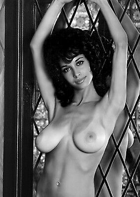 1960s Joyce Gibson Big breasts vintage nude Pinup  8 x 10 Photograph