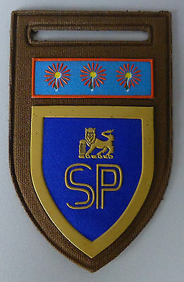 SOUTH AFRICA ARMY STATE PRESIDENTS GUARD 1980's AFRICAN LION old ARM BADGE PATCH