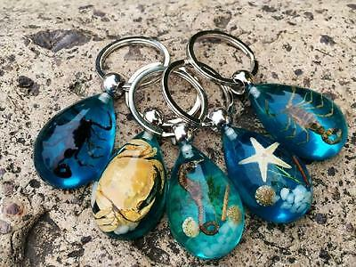 5 PCS real crab scorpion mix insect jewelry blue back drop keychain
