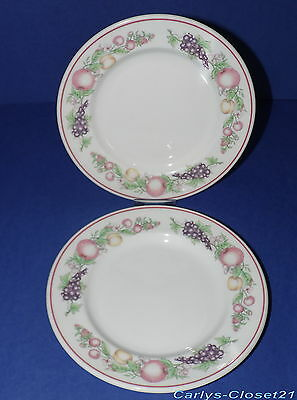 BOOTS * 2 Pottery Side Plates * Orchard Design * 17.5cm Diameter *