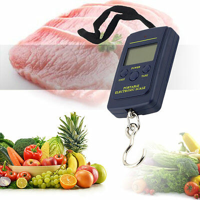 Portable 40kg/10g Electronic Hanging Fishing Digital Pocket Weight Hook Scale#DB