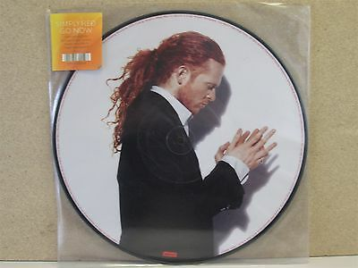 """**PICTURE DISC** SIMPLY RED- Go Now 12"""" Vinyl (2008) Mick Hucknall NM*"""
