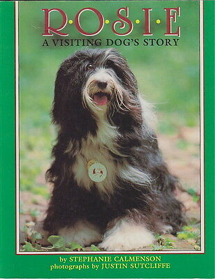 Tibetan Terrier Story  Rosie  A Visiting Dog's Story
