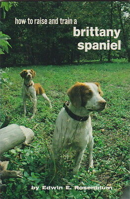 Vintage Brittany Book  Brittany Spaniel How To Raise