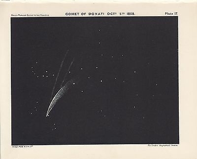 Antique Astronomy COMET DONATI Vintage Print Plate 1925 Ball's Guide to Heavens
