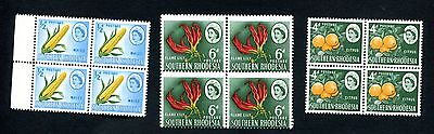 S. RHODESIA 1964 0.5d to 6d BLOCKS oranges Maize Flame Lily  MNH