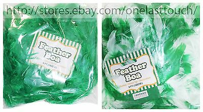 MOMENTUM* St Patricks Day 6 Ft FEATHER BOA Party Accessories/Decor *YOU CHOOSE*