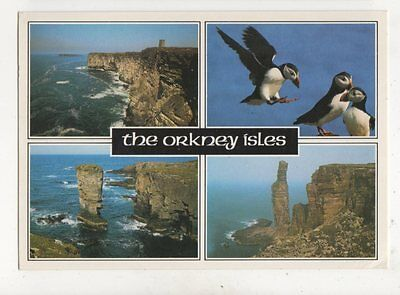 The Orkney Isles 1988 Postcard 930a