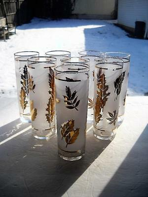 Eight Super Nice Libbey Golden Foliage Tom Collins Glasses, All In Perfect Shape