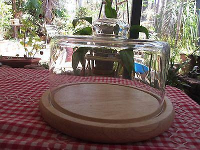 Glass Cheese Dome or for small cakes with wooden base tray / plate