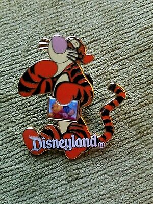 Disney's Tigger Holding Disneyland Photo From Winnie the Pooh Pin