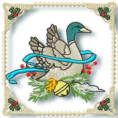 Danny Duck Blocks 12 Machine Embroidery Designs Cd 2 Sizes Included