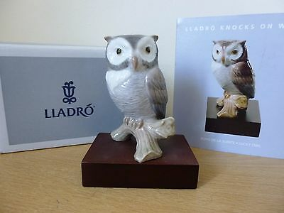 Lladro Lucky Owl - Knocks on Wood Collection 01008035 - Boxed