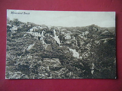 Mardale: Measand Beck - Scarce Valentine's Real Photo Postcard!