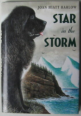 Newfoundland Dog Story  Star In The Storm Hc