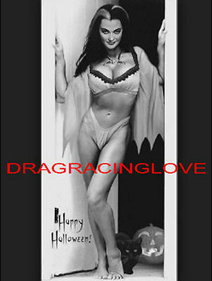 "Beautiful Actress Yvonne De Carlo ""The Munsters"" ""Lily"" 60s TV Show PHOTO! #(8)"