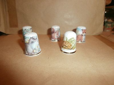 Thimbles   Five Guild Wild Anialms   Mixed    As Shown In Picture   No Paperwork