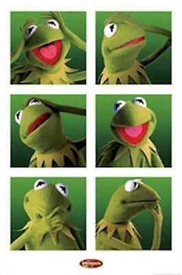 THE MUPPETS ~ KERMIT 6 PICS 24x36 POSTER Disney Jim Henson NEW/ROLLED!