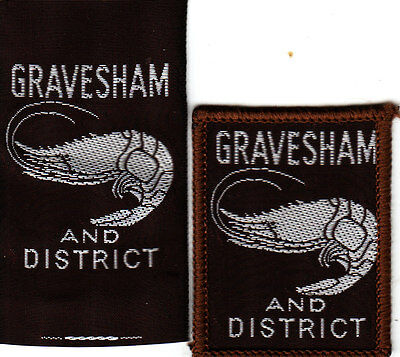 Boy Scout Badges single GRAVESHAM AND District ribbon+bound