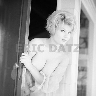 1960's Ron Vogel Negative, busty blonde pin-up girl Terry Higgins, t972280