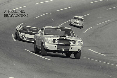 Ford Shelby GT 350 Mustang & Ford GT40 & MG B at 1966 Daytona 24 Hour race–photo
